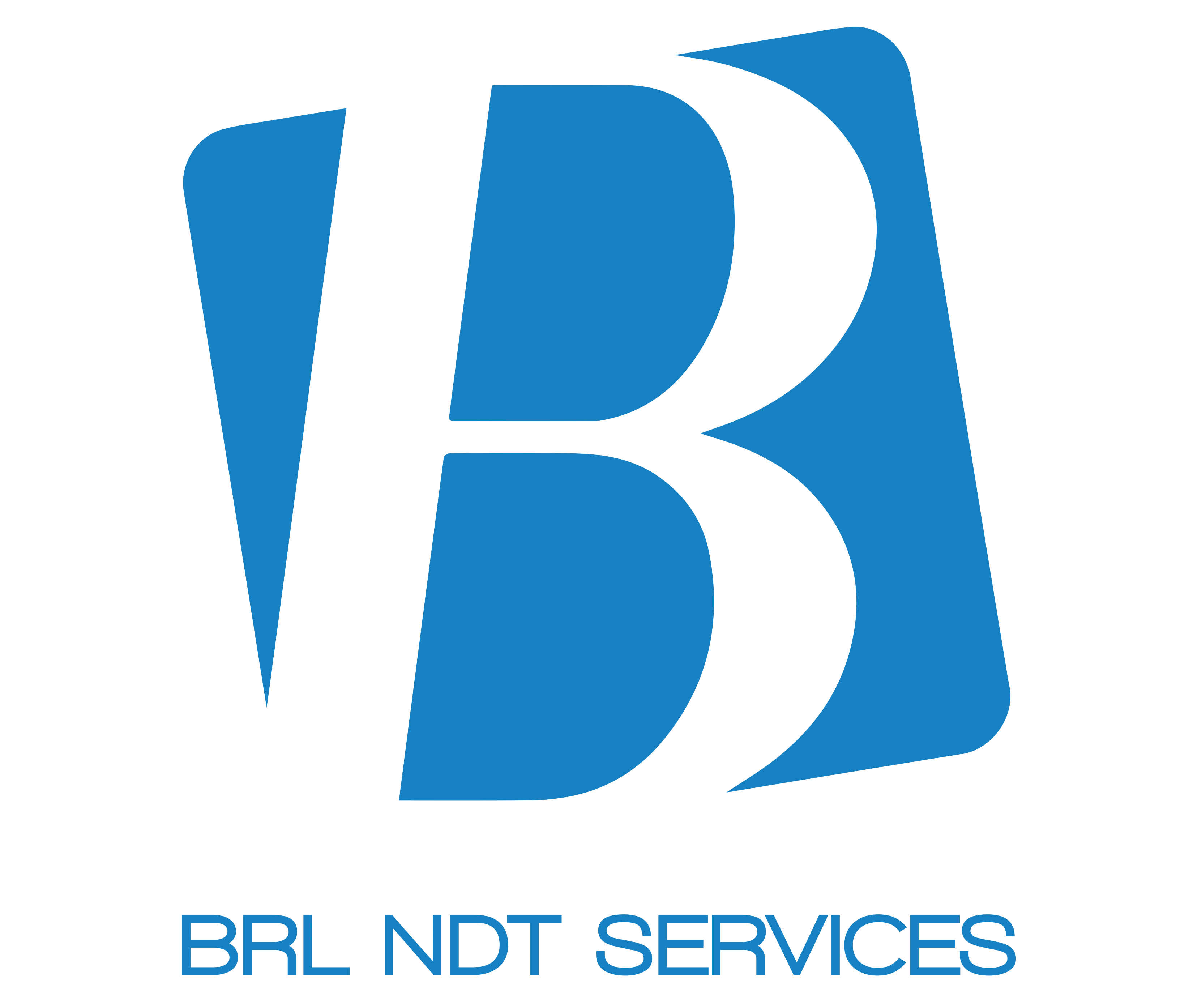 BRL NDT SERVICES